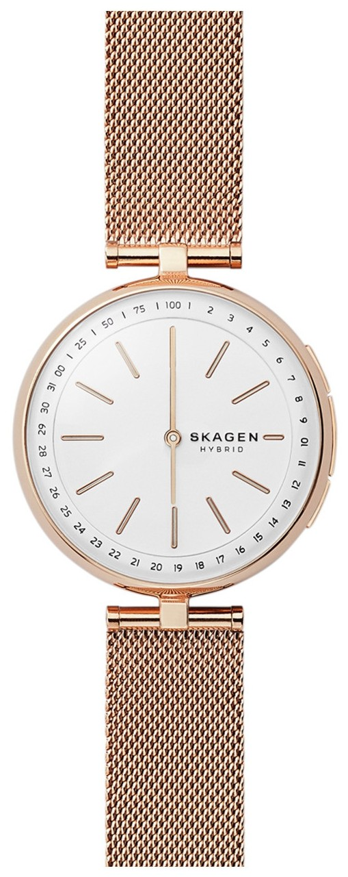 Skagen Connected skt1404